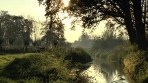 Abcovense Bosjes Goirle