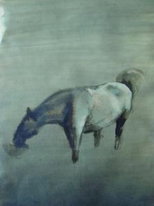 Roos 03072015 - 2 - klein