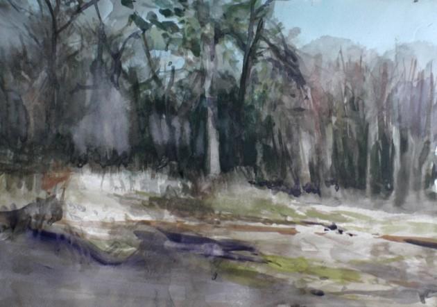 Bij het De Siptenpad (1) - Kaaistoep - 27022019 (30 x 42)