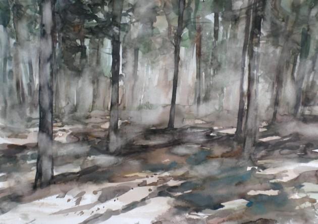 Bos bij het De Siptenpad - Kaaistoep - 28022019 (30 x 42)