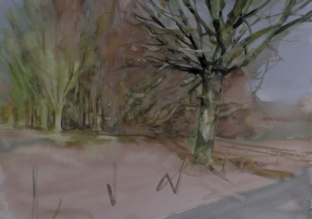 Eik aan de Keistoep - Kaaistoep - 21022019 (30 x 42)