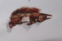 Dode Eekhoorn 27032019 (1)