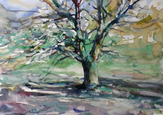 Eijk bij de Hut van Homberg - Kaaistoep - 17042019 (30 x 42)