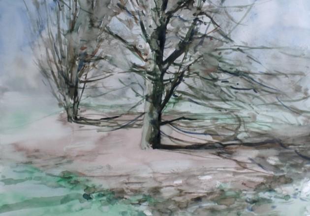 Eiken aan het Roerpad - Tilburg - 12042019 (30 x 42)