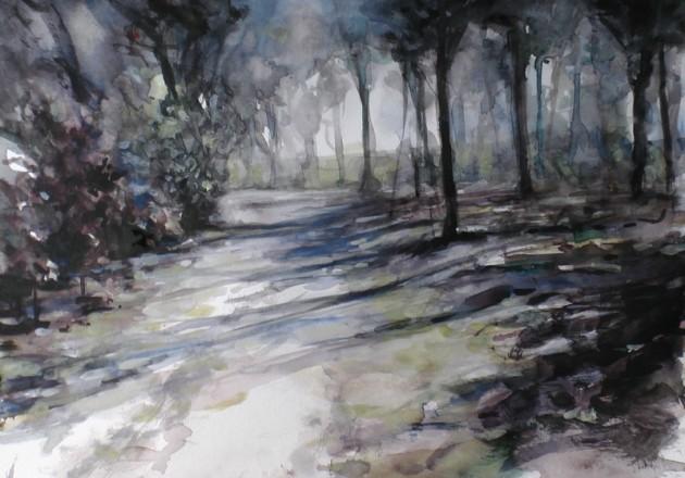 Het De Siptenpad - Kaaistoep - 10042019 (30 x 42)