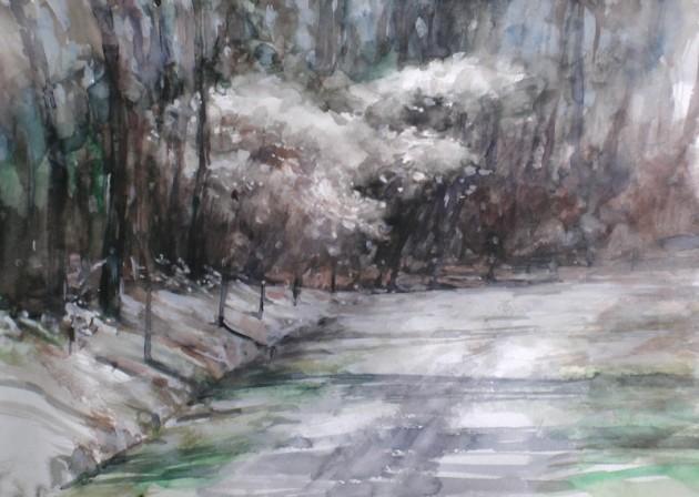 Krentenbomen aan het De Siptenpad - Kaaistoep - 12042019 (30 x 42)