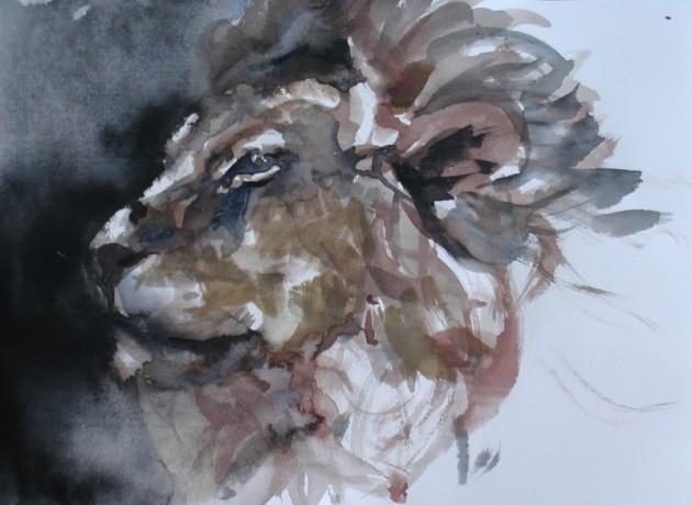 Leeuw - 09042019 (21 x 30)