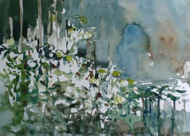 Teunisbloemen bij een graf - Kerkhof Laarstraat - 17072019 (30 x 42)